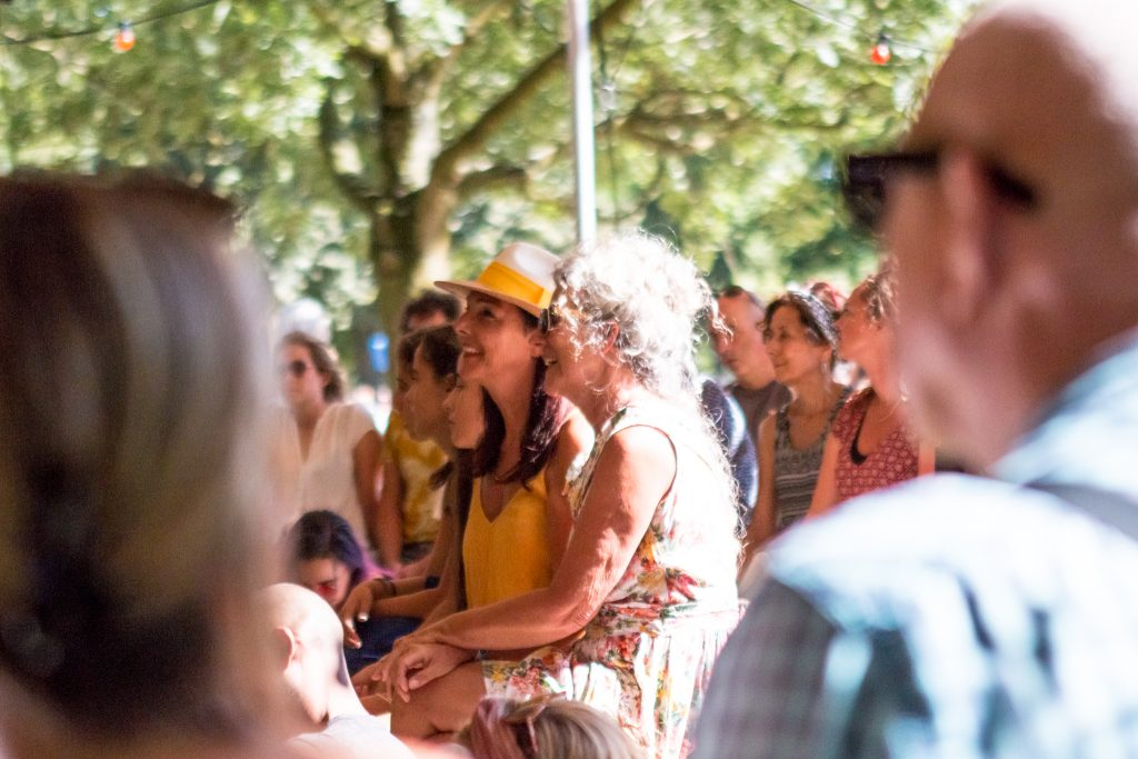 Verslag Festival Duizel in het Park 2018